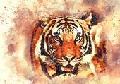 Puzzle La tête du tigre