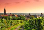 Puzzle Le Village de Dambach