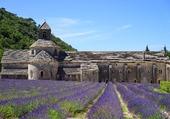 Puzzle Abbaye De Sénanque Commune de Gordes