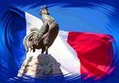 Puzzle Français et Fier .
