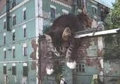 Puzzle L'univers des chats...