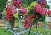 Puzzle Tour de France