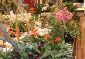 Puzzle Exposition florale Menton