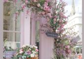 Puzzle Harmonie en rose
