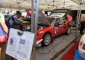 Puzzle Peugeot 205 T16 evo 2 RallyCross