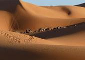 Puzzle désert de Mergouza
