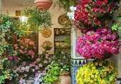 Puzzle Profusion de fleurs