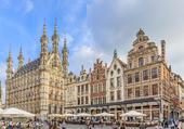 Puzzle Louvain